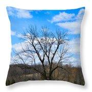 Joshua Tree Country Style Throw Pillow