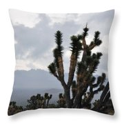 Joshua Tree Forest Ivanpah Valley Throw Pillow