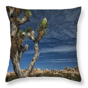 Joshua Tree In Joshua Tree National Park No. 279 Throw Pillow