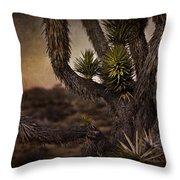 Joshua Tree In Mojave National Preserve Throw Pillow