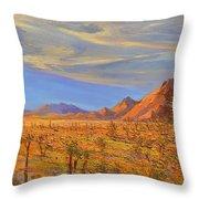 Joshua Tree National Park 2 Throw Pillow