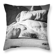 Joshua Tree Rock Throw Pillow