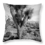Joshua Tree Utah Throw Pillow