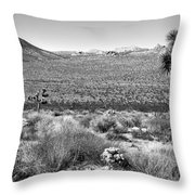 Josua Tree - Geology Tour Road Throw Pillow