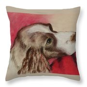 Jourdan Throw Pillow