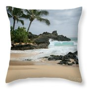 Journey Of Discovery  Throw Pillow
