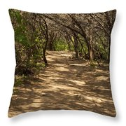 Journey Through The Cedars Throw Pillow