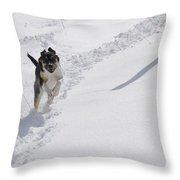 Joy Of Snow Throw Pillow