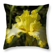Joy Of Sunshine Throw Pillow