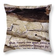 Joy To My Soul Throw Pillow