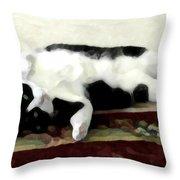 Joyful Kitty Throw Pillow