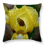 Juicy Lemon Petals Throw Pillow