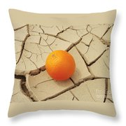 Juicy Orange And Drought. Throw Pillow by Alexandr  Malyshev
