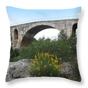 Julian Bridge Provence Throw Pillow