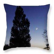 Julian Night Sky 2013 A Throw Pillow