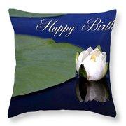July Birthday Throw Pillow