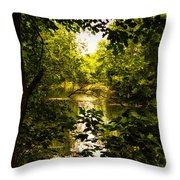 July Indian Lake Looking North Throw Pillow