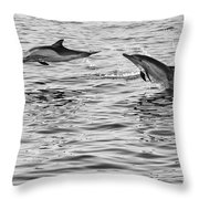 Jump For Joy - Common Dolphins Leaping. Throw Pillow