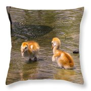 Jump In. The Water Is Fine Throw Pillow