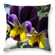 Jump Up And Kiss Me Throw Pillow