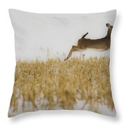 Jumping Doe In Corn Field Throw Pillow