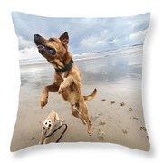 Jumping Dog Throw Pillow by Eldad Carin