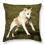 Jumping Into The Game Throw Pillow