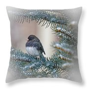 Junco In Pine Throw Pillow