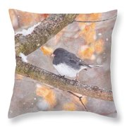 Junco In Snow Throw Pillow
