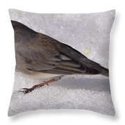 Junco In The Deep Snow Throw Pillow