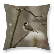 Junco In The Snow Throw Pillow