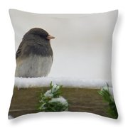 Junco On The Railing Throw Pillow