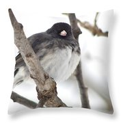 Junco Posing Throw Pillow