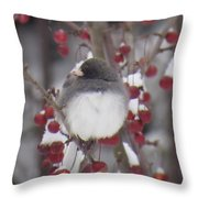 Junco Puffed Up On Crabapple Tree Throw Pillow