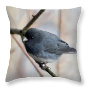 Junco Throw Pillow