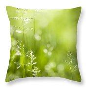 June Green Grass  Throw Pillow by Elena Elisseeva