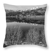 June Lake Black And White Throw Pillow