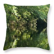 June Morning On The Pawcatuck Throw Pillow