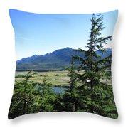Juneau From Glacier Gardens Throw Pillow