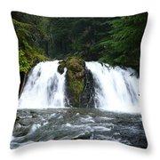Juneau Trail Throw Pillow