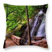 Juney Whank Falls Throw Pillow