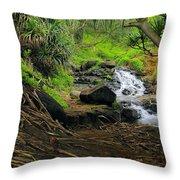 Jungle Stream Kauai Throw Pillow