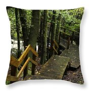Jungle Walkway Throw Pillow