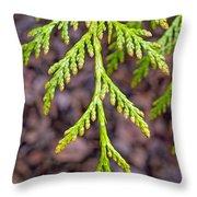 Juniper Leaf Throw Pillow