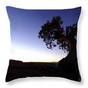 Juniper Tree At Dawn Throw Pillow