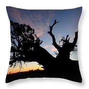 Juniper Tree, Canyonlands National Park Throw Pillow