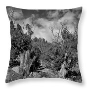 Juniper Trees At The Ghost Ranch Black And White Throw Pillow