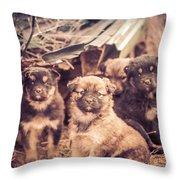 Junkyard Dogs Throw Pillow