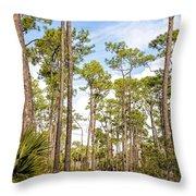 Ancient Looking Florida Forest At Aubudon Corkscrew Swamp Sanctuary Throw Pillow