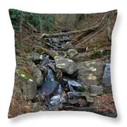 Just A Creek Throw Pillow